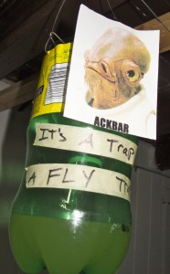 Its a fly trap